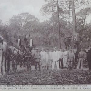 Prisonniers allemands employés dans une exploitation forestière de Saint-Trojan. (Département de la Charente-Maritime, Direction de la Culture, du Sport et de l'Animation, service des Archives départementales-La Rochelle - 78 Fi.)