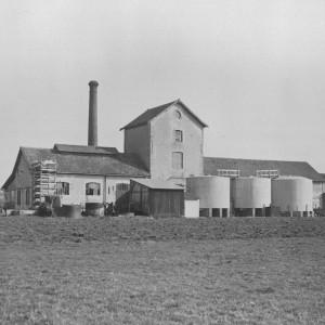 Distillerie coopérative d'alcool de betterave d'Aigrefeuille-d'Aunis (Charente-Maritime). Ses locaux ont été repris en 1960 par la coopérative agricole M.C.A. (Mounet Coopérative Aunis, auparavant coopérative de Surgères) spécialisée dans le stockage des grains et le négoce de semences. Photographie avant sa destruction en 1944. Collection particulière.